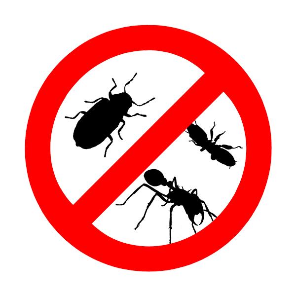 Инсектициди - масова употреба